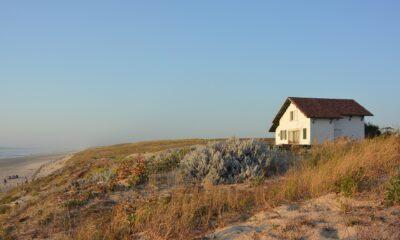 Sommerurlaub an der dänischen Nordseeküste
